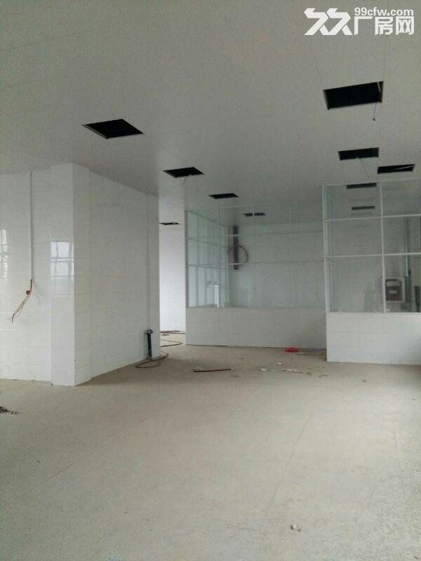 金寨现代产业园8000平全新厂房求出租或合作经营-图(3)