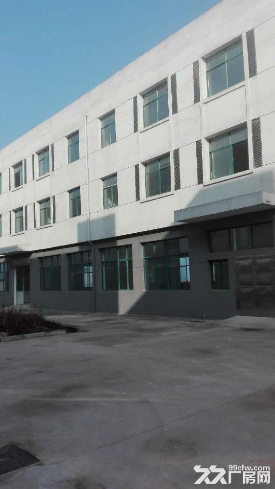 金寨现代产业园8000平全新厂房求出租或合作经营-图(5)