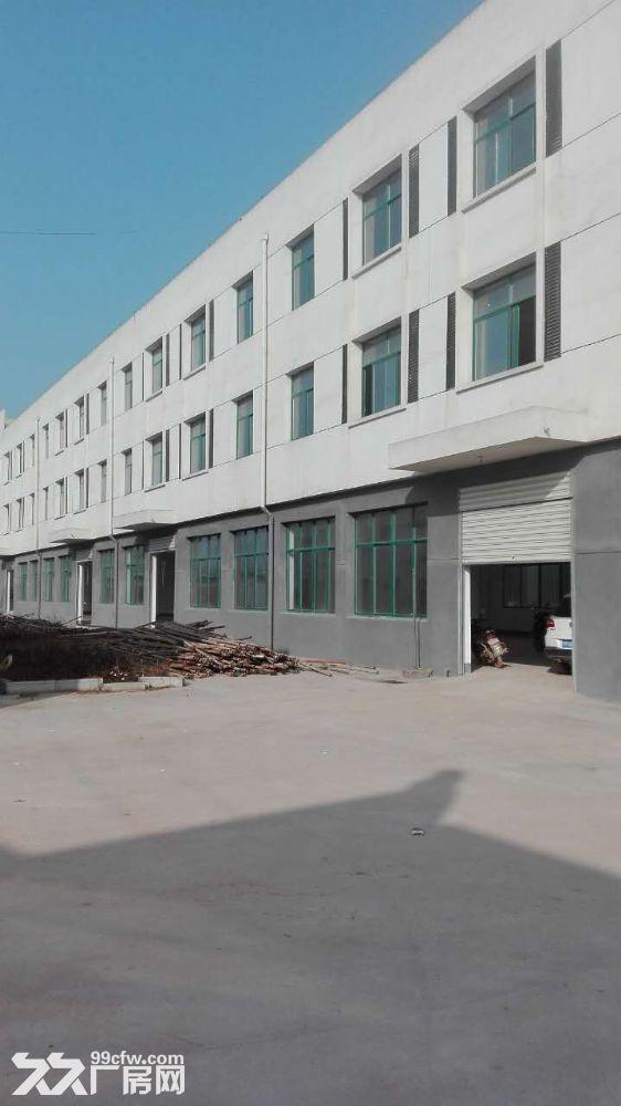 金寨现代产业园8000平全新厂房求出租或合作经营-图(7)