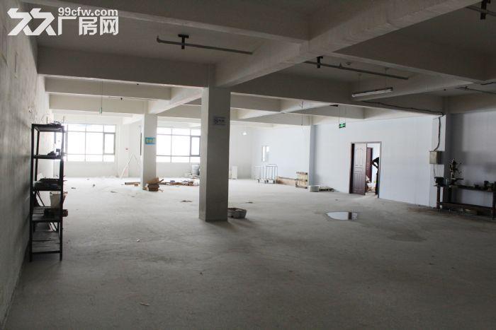 郑州高新区西四环标准工业厂房仓库办公楼租赁1800平-图(3)