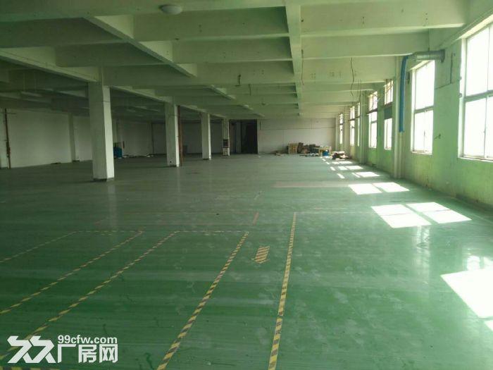 吴江开发区5000平米层高10米配电315KV-图(2)