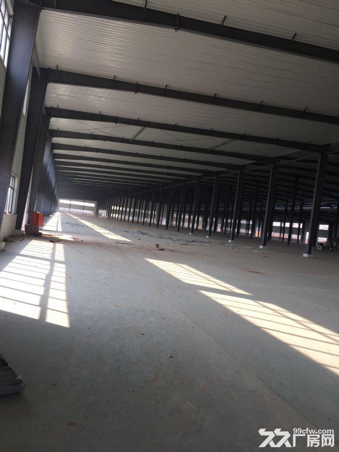 抚州高新区大型钢结构厂房出租-图(1)