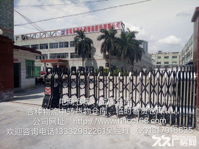 深圳华南仓储提供电商仓库、金属仓库、各种物流中转货物仓库、-图(3)