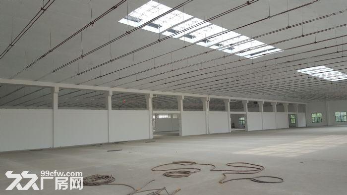 钢筋混凝土单层仓库月台层高6.5米作业场地大-图(1)