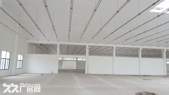 钢筋混凝土单层仓库月台层高6.5米作业场地大-图(2)