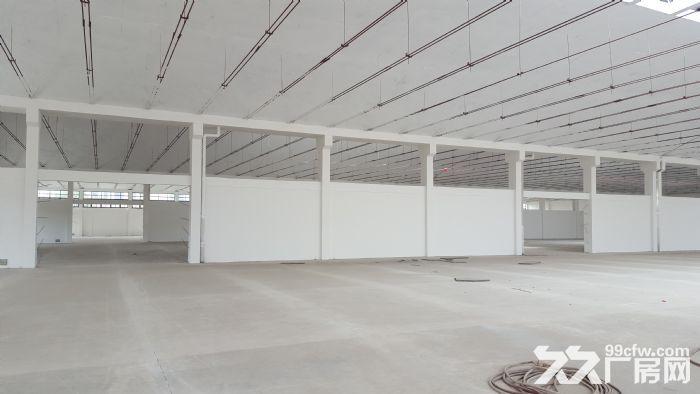 钢筋混凝土单层仓库月台层高6.5米作业场地大-图(4)