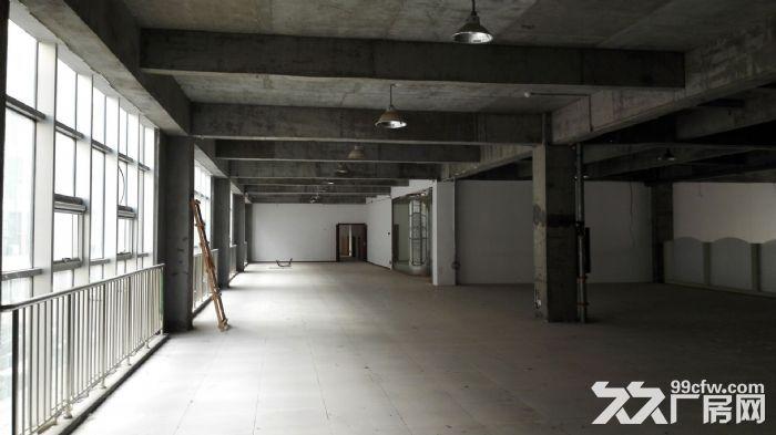 50年产权厂办一体科技园区800至3000平标准厂房-图(2)