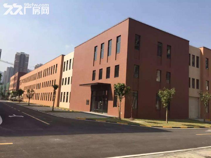 双福恒大旁【独栋1000、1800平米独栋厂房】-图(3)