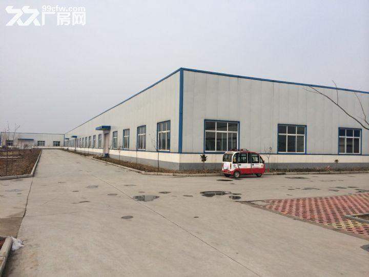 山东省临沂市临沭县40亩地,6000平米厂房租赁-图(3)