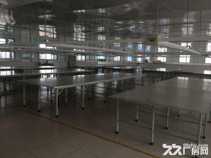 山东省临沂市临沭县40亩地,6000平米厂房租赁-图(5)
