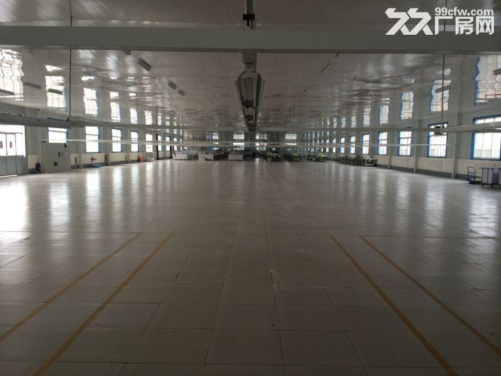 山东省临沂市临沭县40亩地,6000平米厂房租赁-图(6)