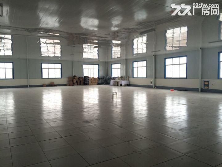 山东省临沂市临沭县40亩地,6000平米厂房租赁-图(7)