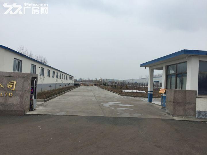 临沭县城大型厂房出租或出售-图(1)