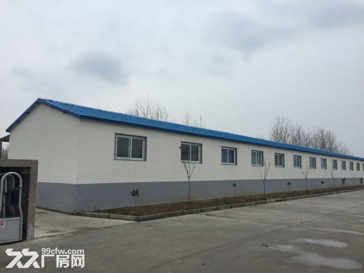 临沭县城大型厂房出租或出售-图(2)