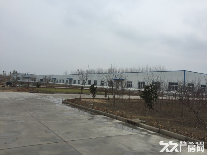 临沭县城大型厂房出租或出售-图(3)
