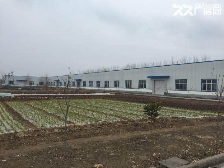 临沭县城大型厂房出租或出售-图(4)