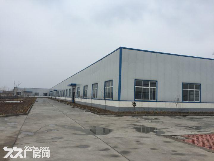 临沭县城大型厂房出租或出售-图(5)