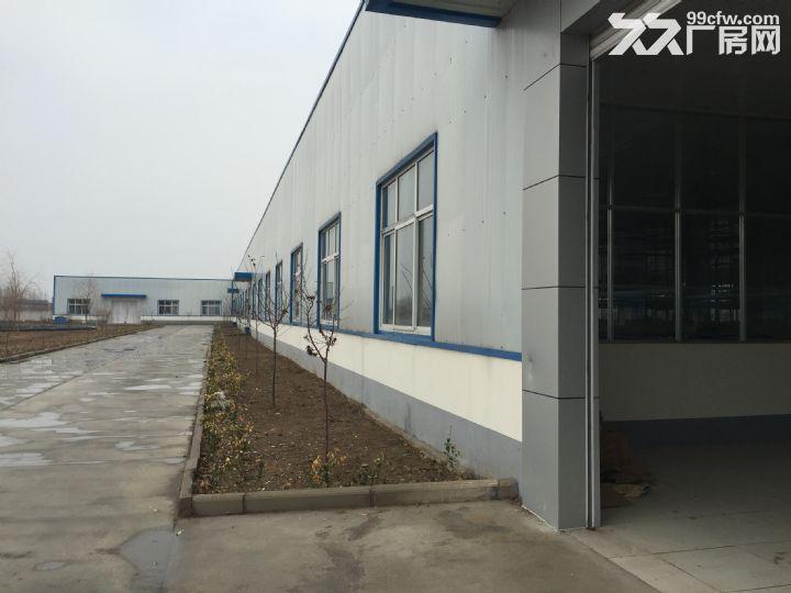 临沭县城大型厂房出租或出售-图(6)