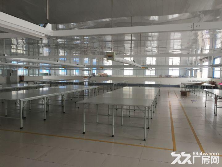 临沭县城大型厂房出租或出售-图(7)