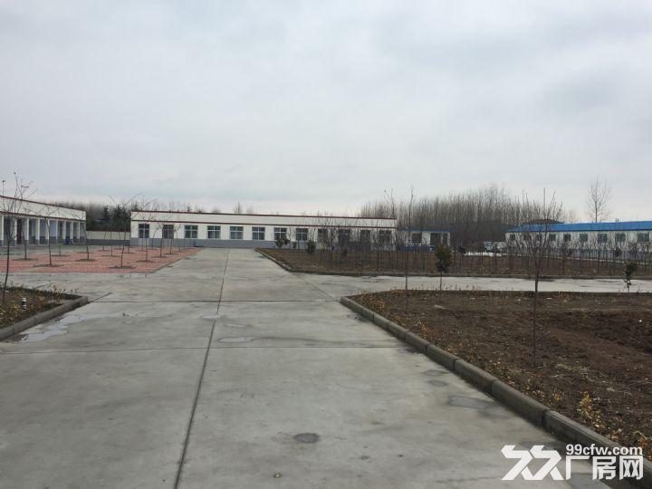 临沭县城大型厂房出租或出售-图(8)