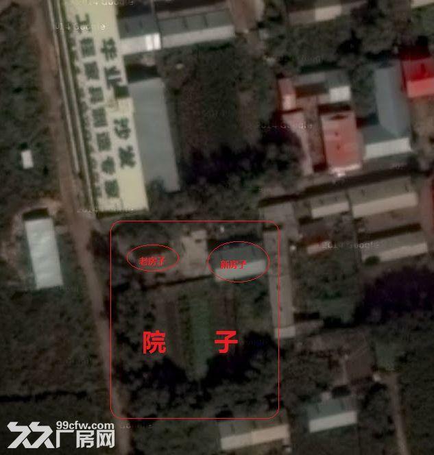 有王岗附近三姓村民房带个大院子3000米左右想出售-图(3)