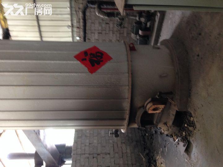 胶合板厂房出租设备齐全-图(5)