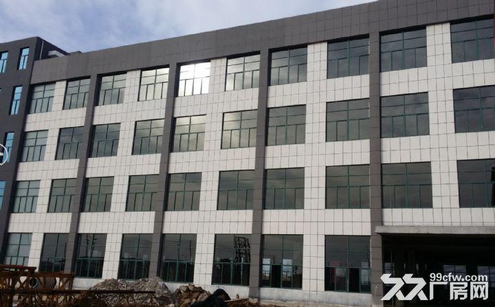 苏滁产业园附近钢结构、框架厂房对外出租-图(1)