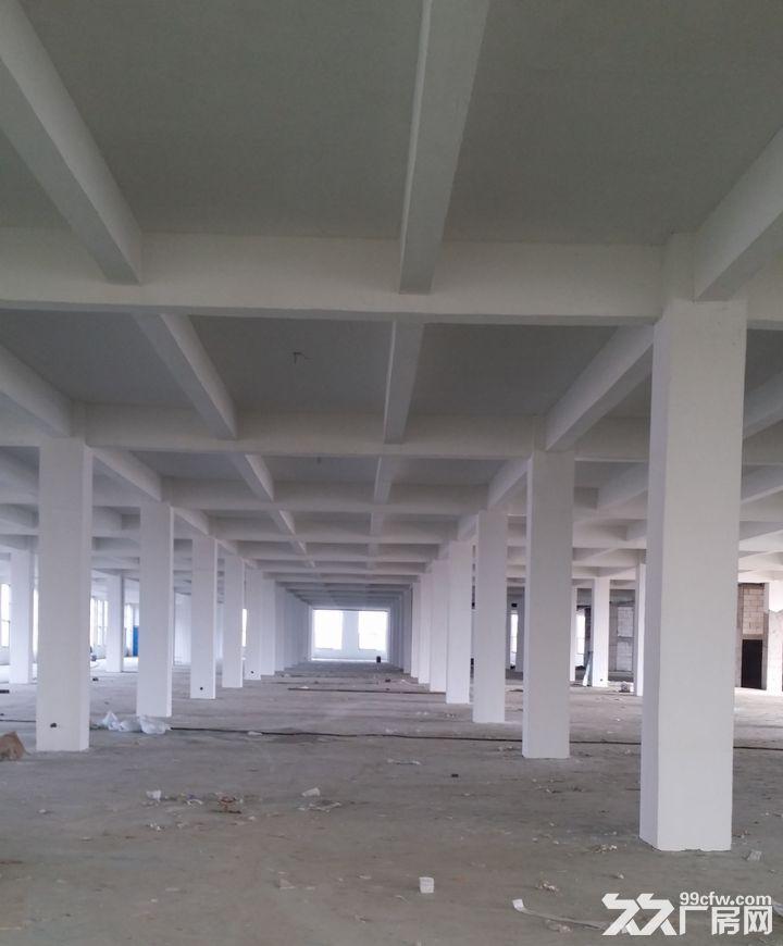 苏滁产业园附近钢结构、框架厂房对外出租-图(3)