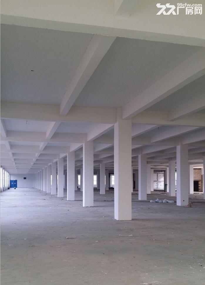 苏滁产业园附近钢结构、框架厂房对外出租-图(4)