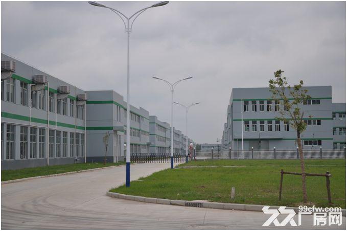 宿迁有2290方新厂房出租,证件齐全!︴︴︴-图(3)