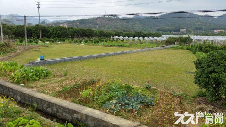 从化温泉桃园高速出口侧边1.5−3亩平地永久转让-图(6)