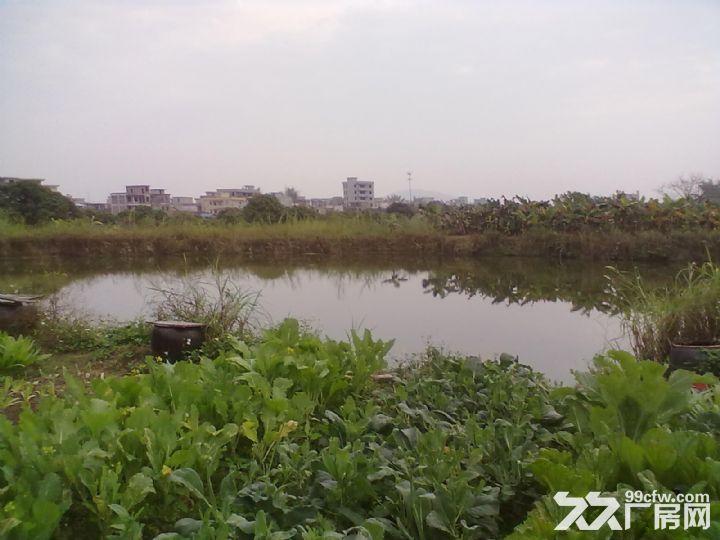 从化区城郊美都健康产业园附近6亩果园鱼塘平地永久转让-图(3)
