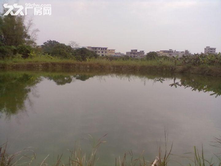 从化区城郊美都健康产业园附近6亩果园鱼塘平地永久转让-图(4)