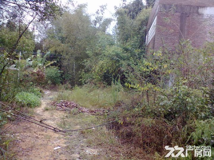 从化明珠工业园明珠大道边3亩果园宅基地楼房永久转让-图(3)