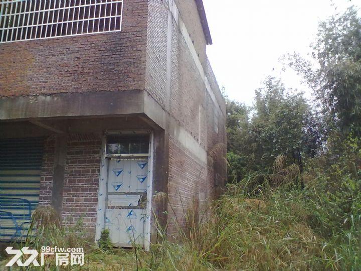 从化明珠工业园明珠大道边3亩果园宅基地楼房永久转让-图(4)
