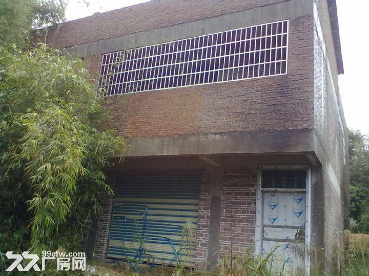 从化明珠工业园明珠大道边3亩果园宅基地楼房永久转让-图(5)