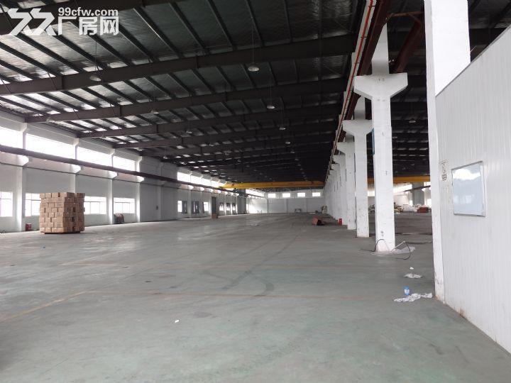 吴江开发区2800平米层高10米-图(1)