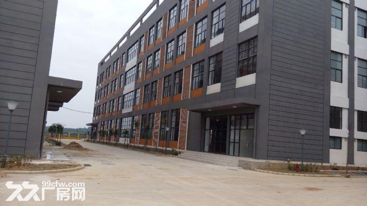 南宁市青秀区伶俐工业园全新标准厂房出租-图(3)