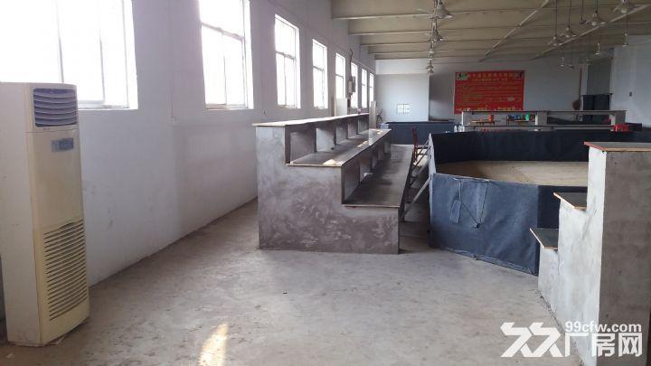 厂房出租办公室厨房卫生间-图(4)