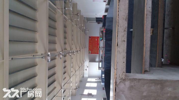 厂房出租办公室厨房卫生间-图(5)