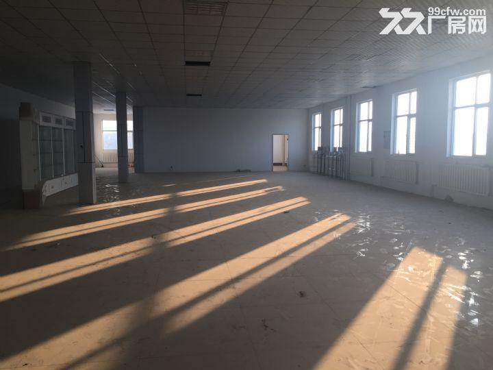 长风东街4000平米库房出租-图(4)