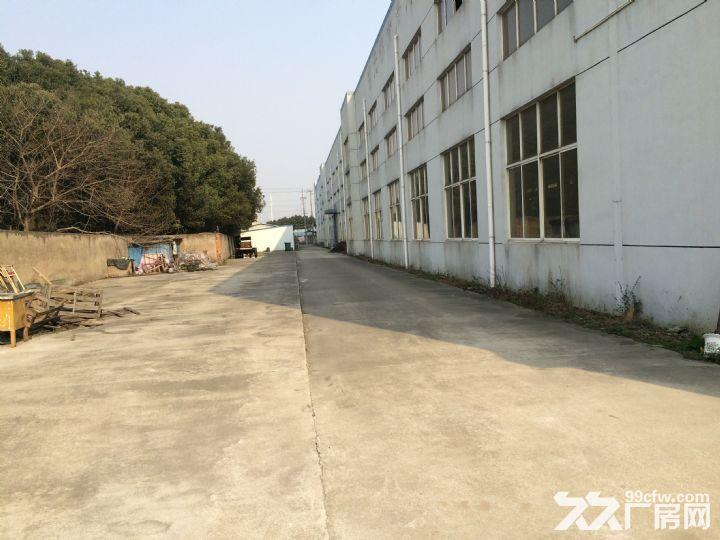 胡埭南区独门独院6000平米漂亮厂房低价出租-图(5)