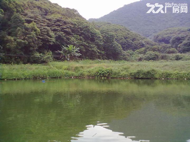 从化区城郊龙潭水库附近1653亩山地出租-图(2)