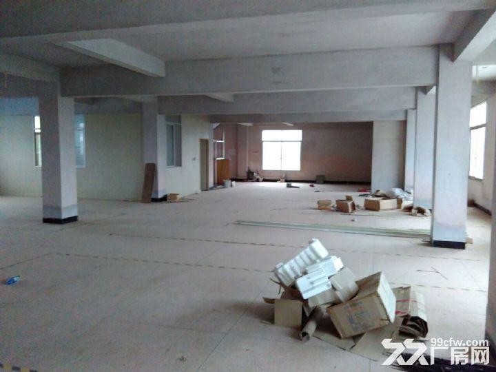 厂房仓库共1200平方出租-图(2)