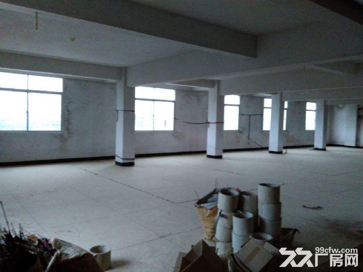 厂房仓库共1200平方出租-图(6)