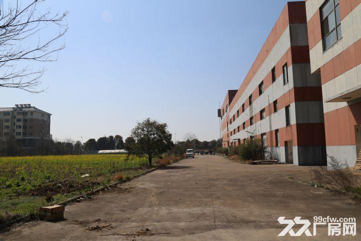 清浦区明远路−厂房出租-图(3)