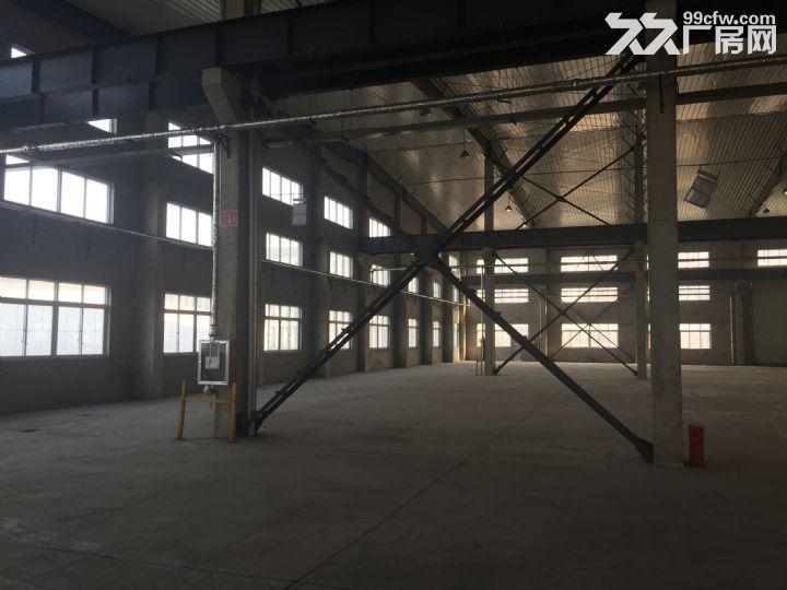 烟台开发区东方工业园独栋1万平米厂房出租-图(3)