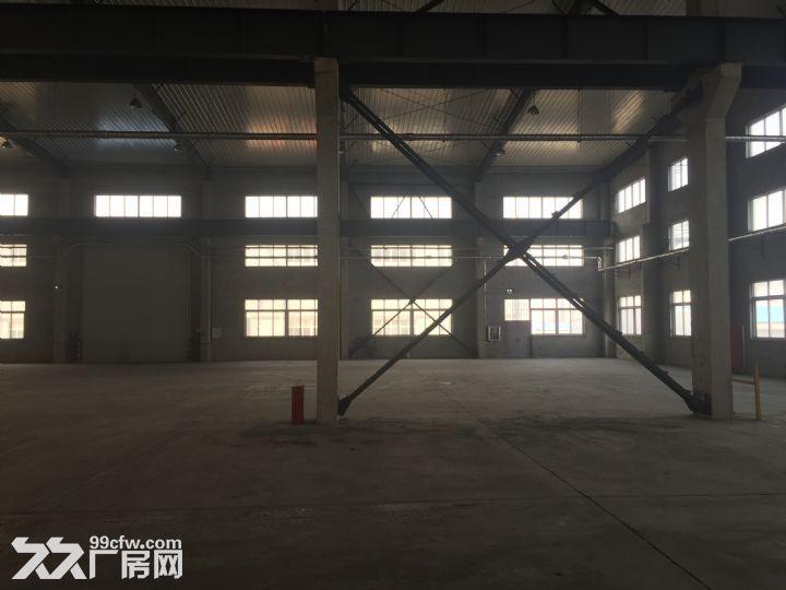 烟台开发区东方工业园独栋1万平米厂房出租-图(5)