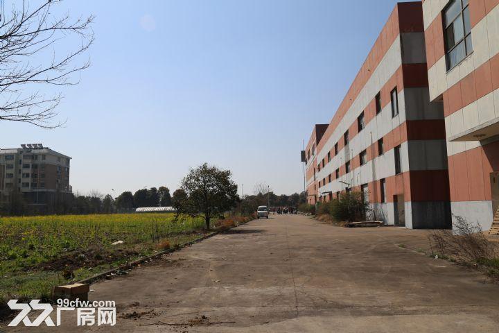 淮安市清浦区优质厂房出租-图(3)