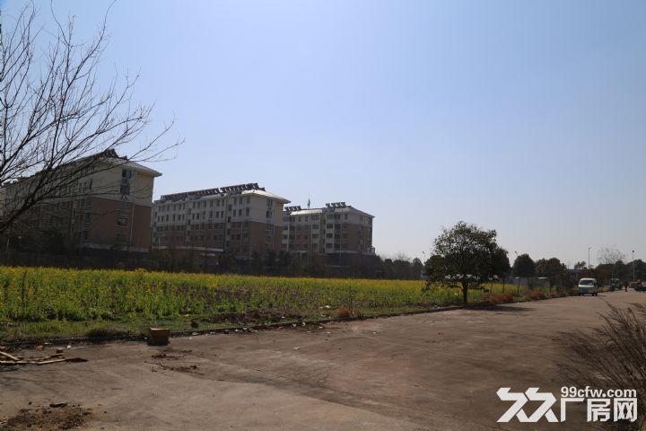 淮安市清浦区优质厂房出租-图(5)